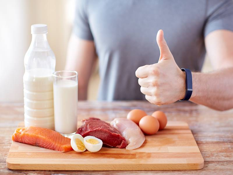 how protein helps in losing weight