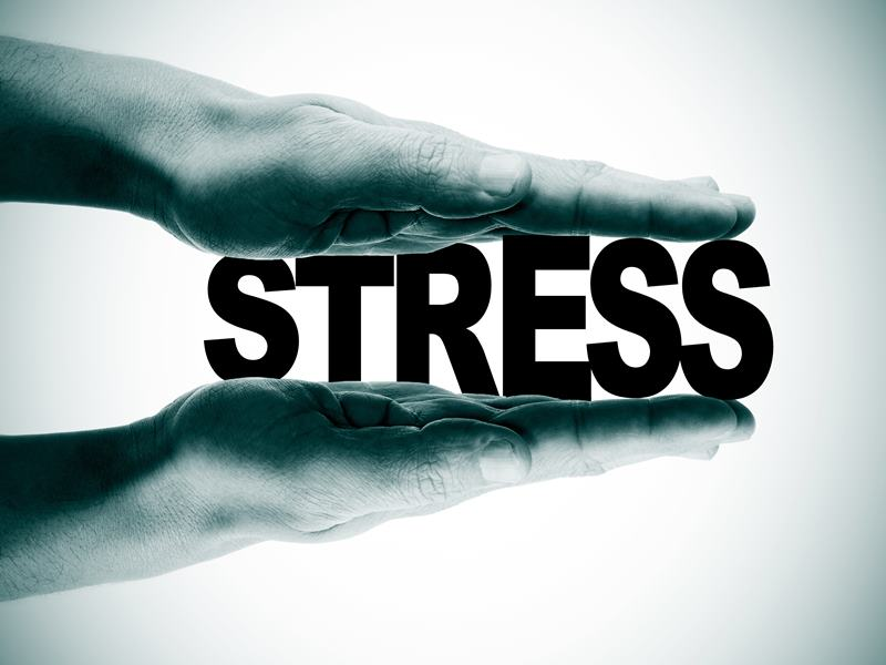 stress and its causes