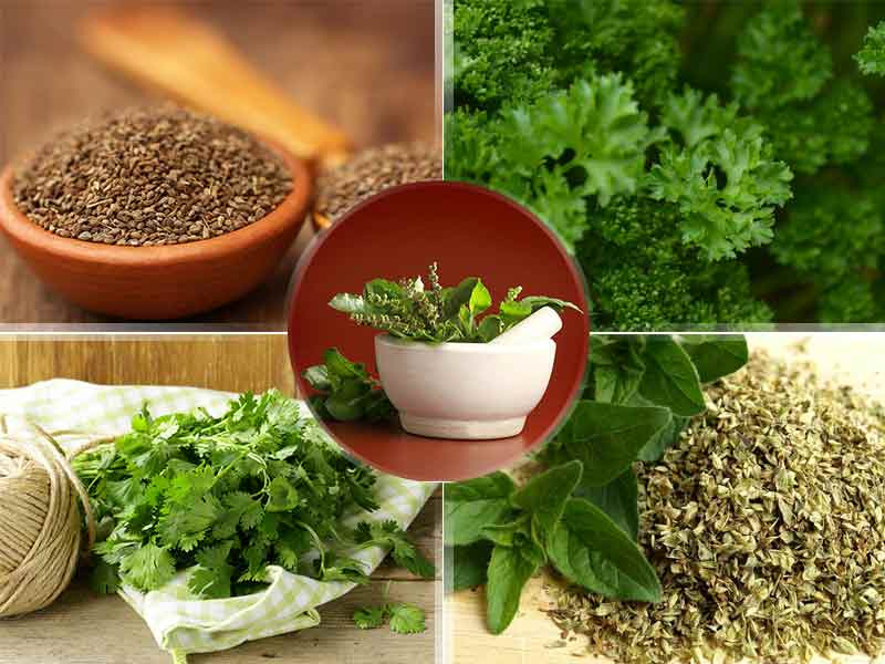 amazing herbs you can use daily