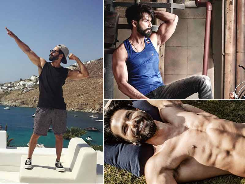 5634d0bc How to get ripped and tonned body like Shahid Kapoor - lifealth