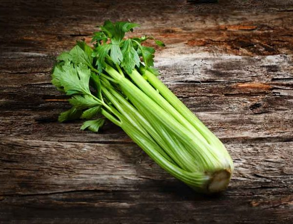 Six amazing health benefits of celery