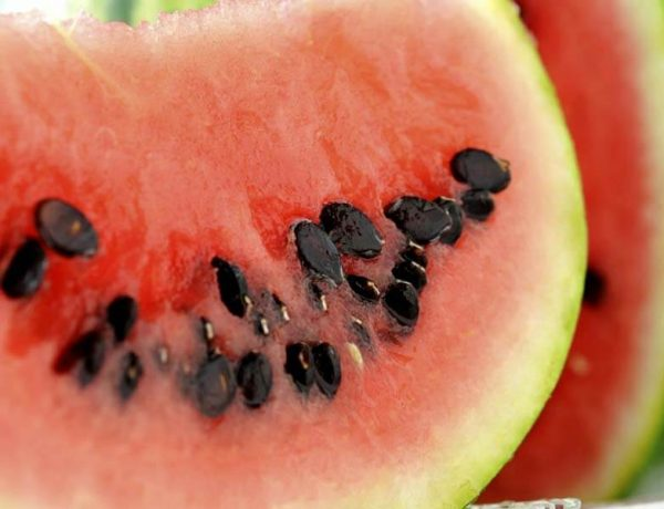 What Are The Amazing Health Benefits Of Watermelon Seeds