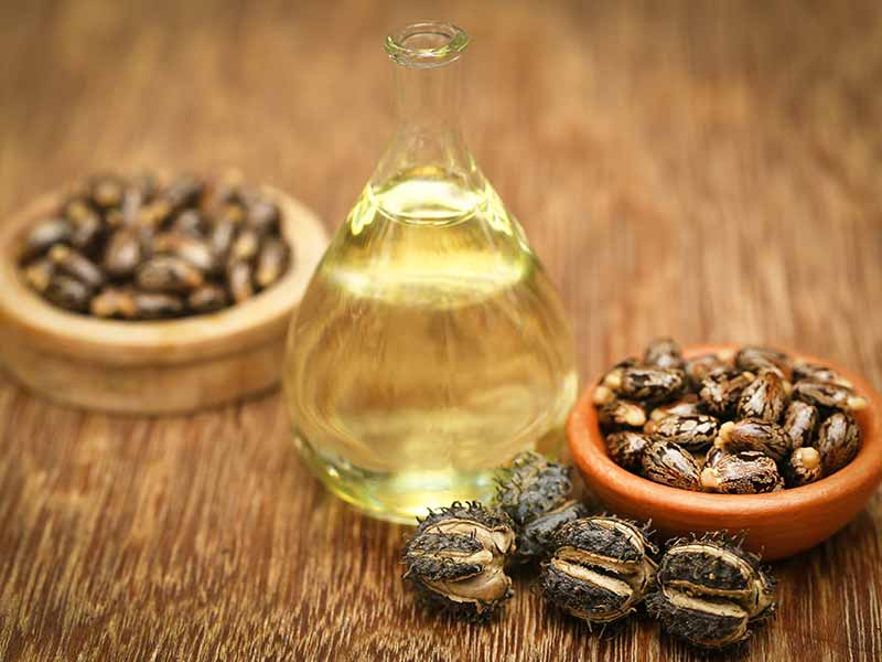 eliminate dandruff with the help of castor oil