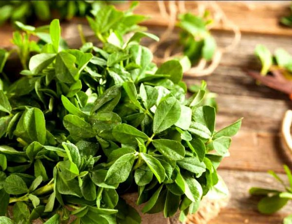 What Are The Health Benefits Of Fenugreek Leaves