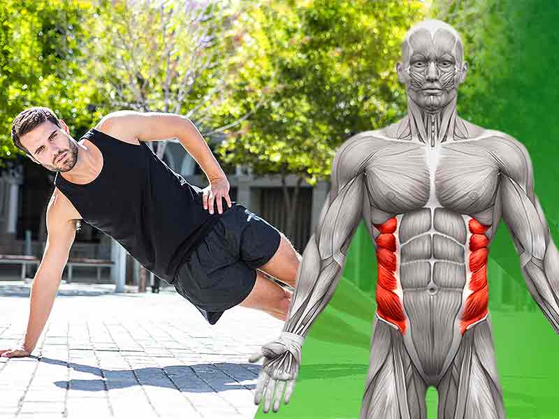 effective exercise to get attractive oblique muscles