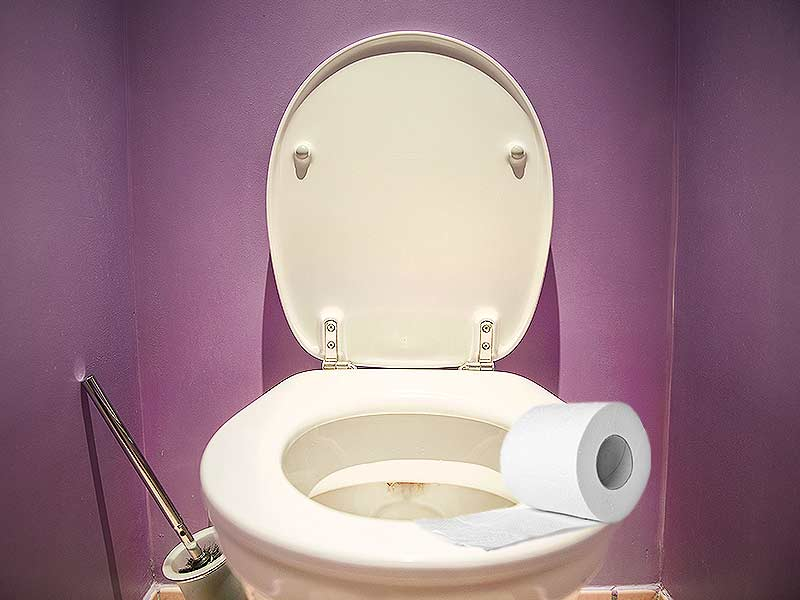 Why you should not put toilet paper on public toilet seat