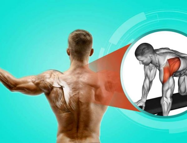 exercise to strengthen shoulders rear delt muscles