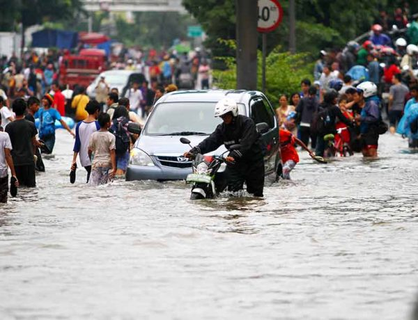 What are the safety precautions one should take during flood and how to survive it