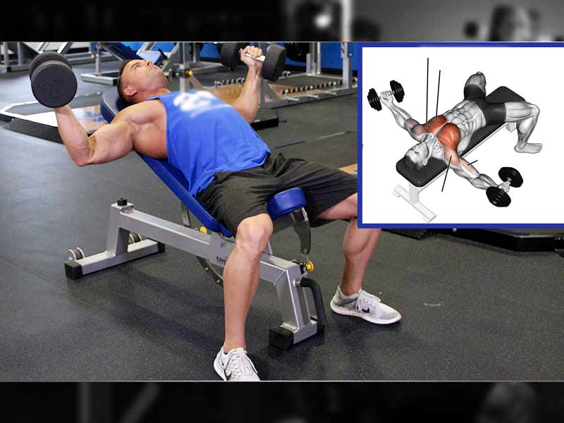 right way practice dumbbell fly exercise