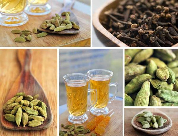 How does drinking cardamom water help your body