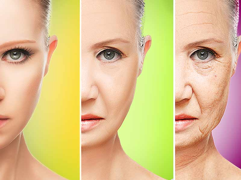 effects of aging on your body
