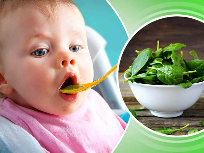 health benefits of spinach for babies