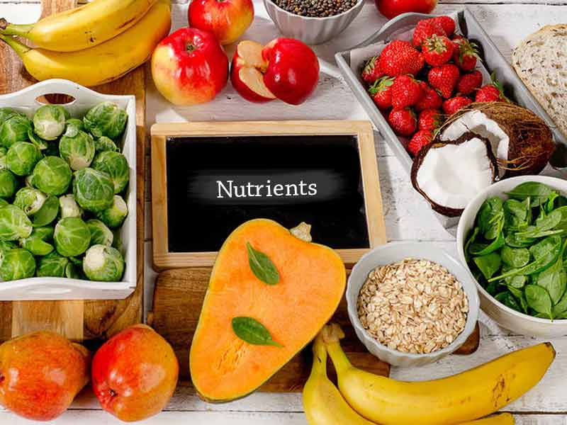 Some Surprising Sources Of Nutrients You May Not Know