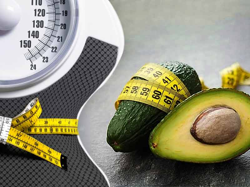 How Do Avocados Help To Lose Weight