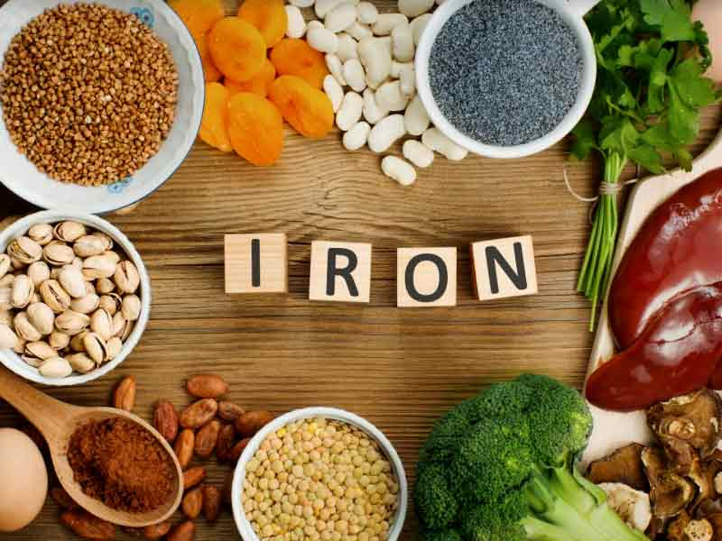 What is the importance of iron for the human body