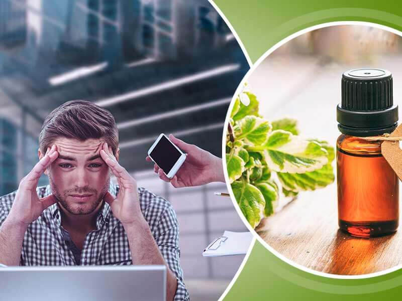 Which essential oils help to cope up with anxiety and stress