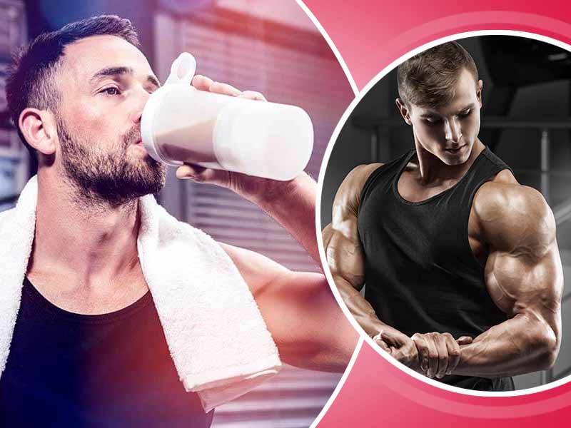 types of protein shakes to build strong muscles