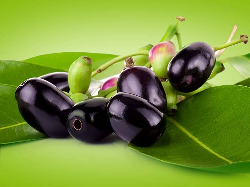what are the health benefits of eating jamun or black plum