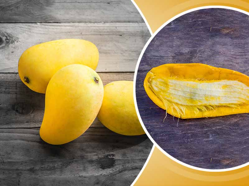 What are the health benefits of the mango seeds