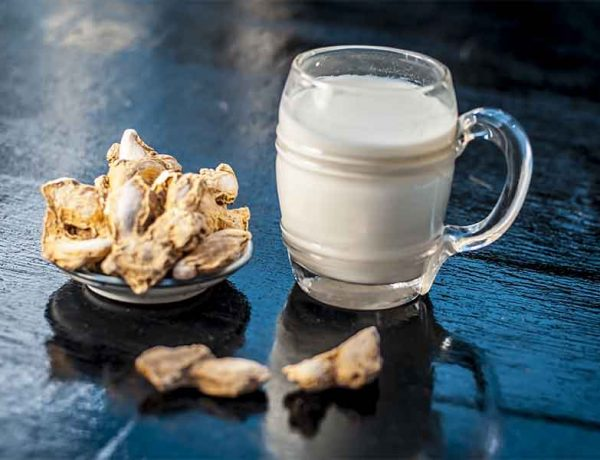 health benefits of Ginger Milk