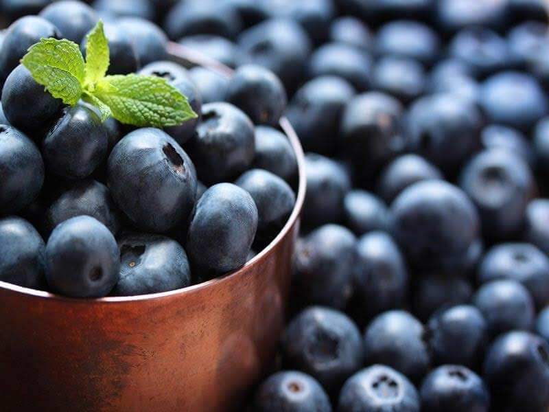 Consumption of blueberries is beneficial for muscle gain.