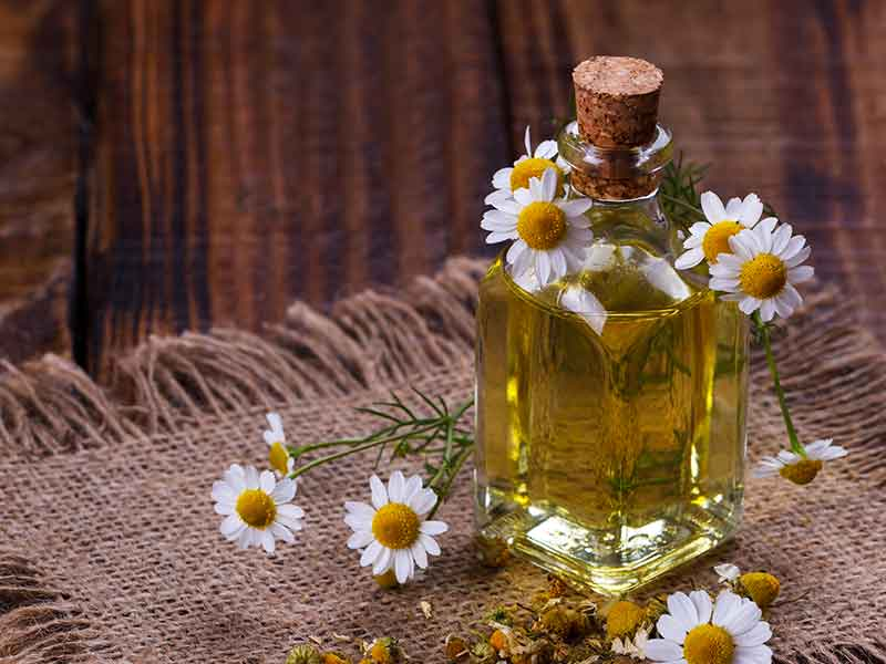 Chamomile Essential Oil Benefits for skin
