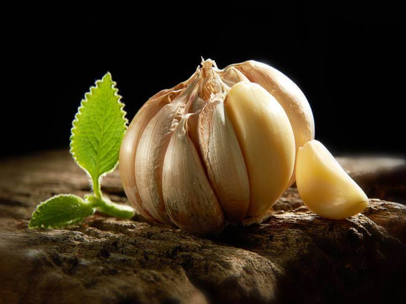 Lose weight with the help of garlic