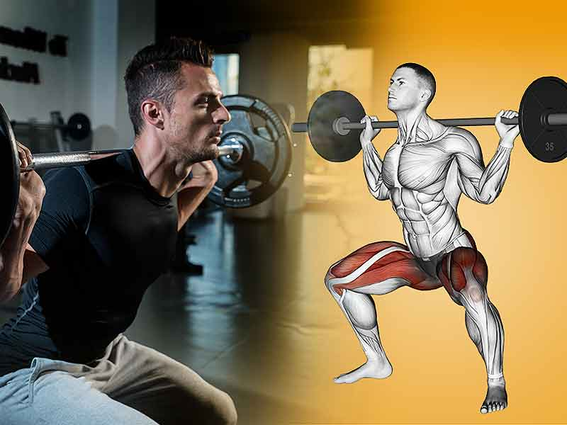 Burn fat with multi joint exercise