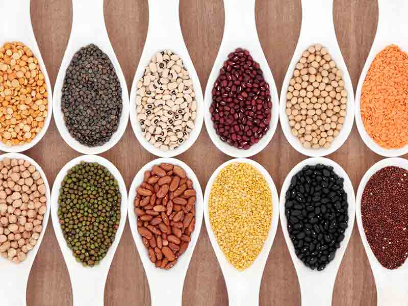 Beans and pulses in your diet